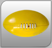 Manufacturers Leather Balls
