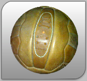 Natural Leather 18 Panel Ball India